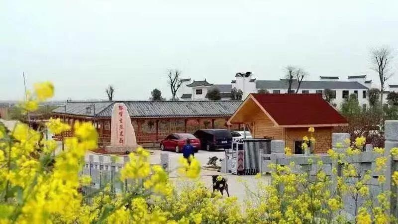 绿野生态农庄位于东至县大渡口镇大联圩.
