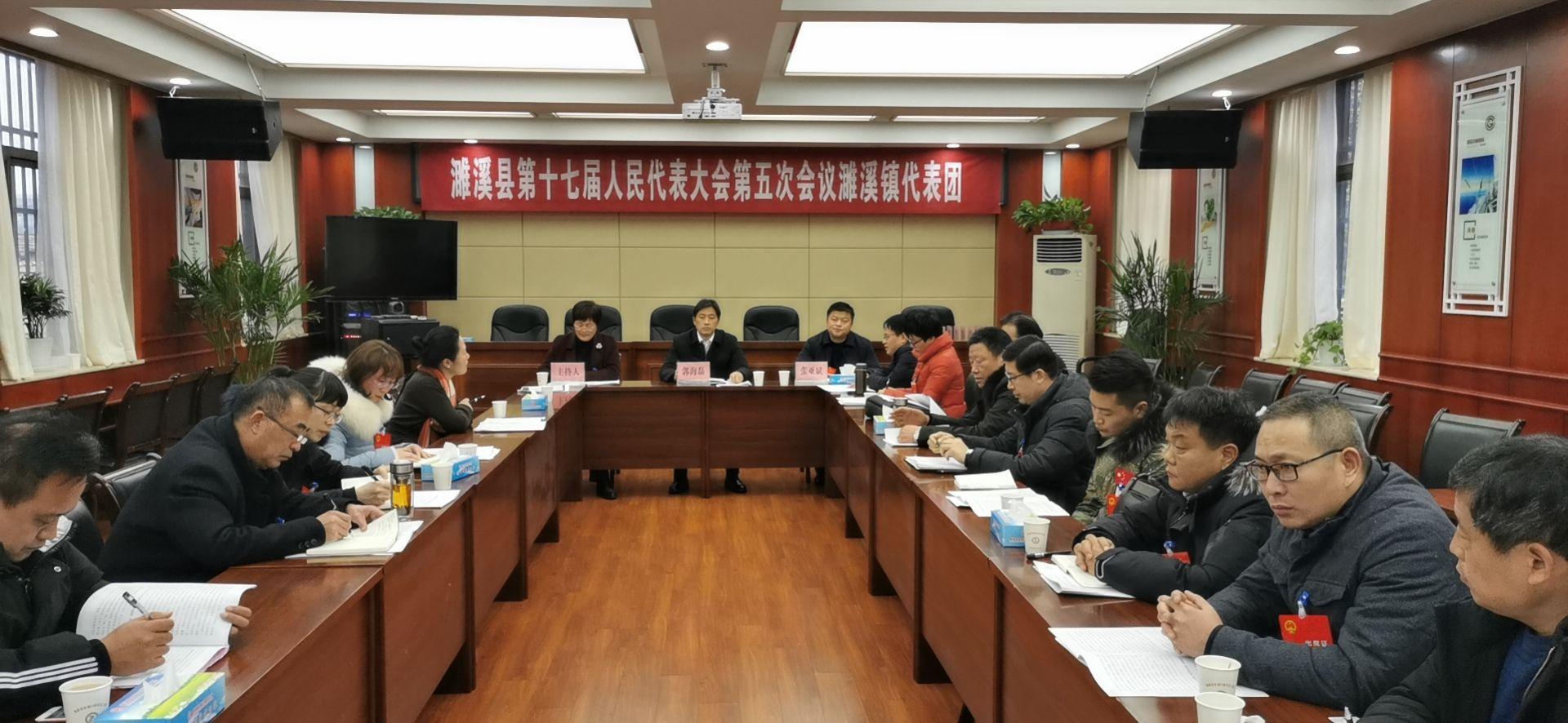 郭海磊參加濉溪鎮代表團分組…
